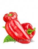 Болгарский перец красный конический Супер Ласточка (Первый сорт)