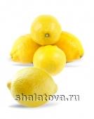 Лимон Узбекистанский (высший сорт)