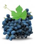 Виноград Молдова (с косточкой) калибр ±1 кг/ без упаковки