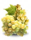 Виноград Бианка калибр ±0.2 кг/ без упаковки