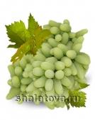Виноград Хусайни (первый сорт)