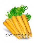 Морковь жёлтая Желтый калибр ±0.15 кг/ упаковка ±20 кг