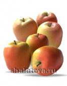 Яблоко Голден Пинк калибр 60+/ упаковка ±15 кг