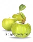 Яблоко Семеренко калибр 70+/ упаковка ±15 кг