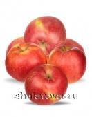 Яблоко Морган калибр 70+/ упаковка ±15 кг