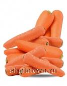 Морковь Кордоба калибр ±0.15 кг/ упаковка ±35