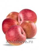 Яблоко Фуджи калибр 70+/ упаковка ±15 кг