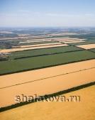 Земля сельхозназначения с Виноградником сорт Молдова столовый и Пашня 2,34 Га